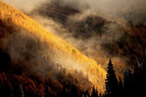 Mist Near Ophir